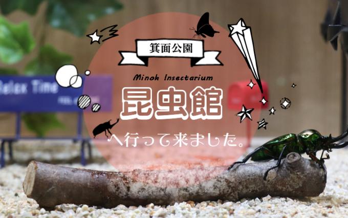 子どもと一緒に「箕面公園昆虫館」へ行って来ました。